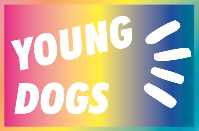 +logo-YD_rein